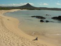 Der Strand bei Cerro Dragon/Santa Cruz