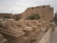 Sphingenallee des Karnak Tempels