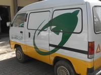 Ein ägyptisches Postauto