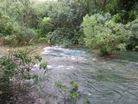 348 Kreuzfahrt AIDAvita - Adria -  Ausflug zu den Krka-Wasserfällen