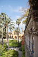 in den Gärten des Alcázar Real