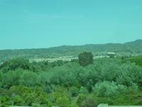 Citrusbäume, Olivenbäume und weiße Städte