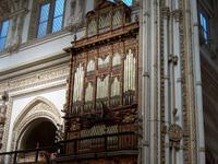 Orgel der Mezquita