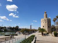 Kathedrale Santa Maria de la Sede mit ihrem bekannten Glockenturm Giralda in Sevilla (9)