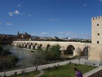 Römische Brücke in Cordoba (9)