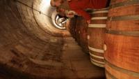 Besichtigung und Weinverkostung in der Bodega Torres