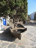 Baum im Boot - Port Lligat