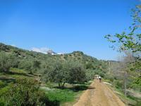 Vía Verde de la Sierra (12)