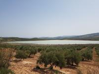Laguna Salobral - Via Verde del Aceite