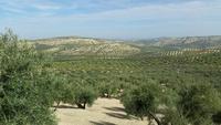 Jaen - Alcaudete - 10 Tage Radreise Andalusien entlang der Via Verde - Natur und Kultur in Spanien