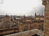 Blick auf die Kathedralendaecher