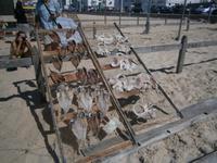 am Strand von Nazare