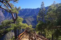 La Caldera - La Palma
