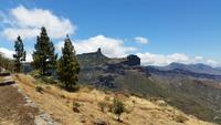 Inselhüpfen auf den Kanaren - Gran Canaria - Tejeda Pass
