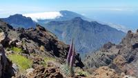 La Palma - Rundreise – Inselhüpfen auf den Kanaren