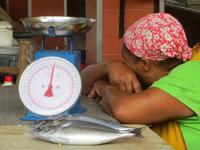Fischmarkt Mindelo, Kapverden