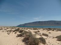Rundreise Lanzarote, Fuerteventura – Strand auf La Graciosa