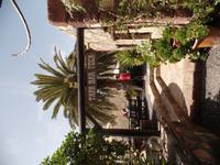 Rundreise Lanzarote, Fuerteventura – Vega del Rio Palmas