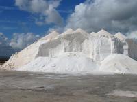 mallorquinisches Salz