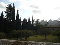 in den Gärten von Alfábia