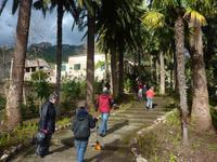 In den Gärten von Alfabia