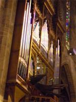 Lichtspiel an der Orgel