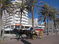 Hotel Grand Fiesta - El Arenal
