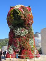 Bilbao - Guggenheim-Museum - Blumenhund