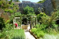 031-Botanischer Garten im Steinbruch Lithica