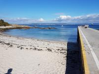 Wanderreise Nord-Spanien – Jakobsweg und Atlantik 9 Tage Wanderreise in Nordspanien mit San Sebastian – Picos de Europa – Jakobsweg – Santiago de Compostela – Port (2499)