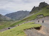 Wanderung im Nationalpark Picos de Europa von Fuente De bis Espinama bei Potes in Kantabrien (5)