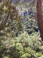 Suchbild- gelbe Seilbahn zum Kloster Montserrat