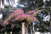 Im Park Santa Catalina