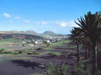 Im Tal der 1000 Palmen