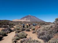 Wanderung im Teide Nationalpark