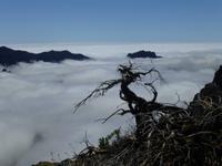 ...über den Wolken auf La Palma