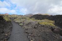 Wanderung vom Vulkan San Antonio zum Leuchtturm von Fuencaliente – La Palma