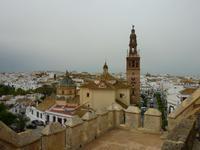 Blick auf die Altstadt von Carmona