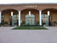 Besuch auf dem Weingut Torres