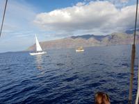 Bootsfahrt entlang der Steilküste von Los Gigantes (11)