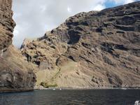 Bootsfahrt entlang der Steilküste von Los Gigantes (29)