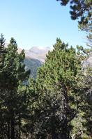 Spaziergang auf dem Gipfel
