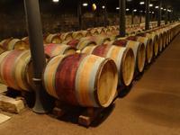 Macon - Weinmuseum