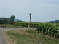 Durch die Felder Richtung Meursault