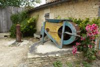 Kahnfahrt im Marais de Poitevin (11)