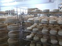 Typische burgundische Käserei in Brochon bei Dijon