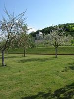 Abbaye Saint-Georges de Boscherville Klostergarten