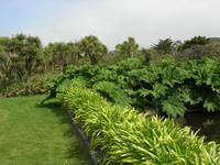 Vauville Jardin Botanique