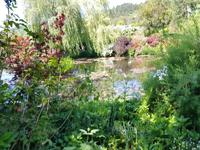 19.5.2018 Giverny Wassergarten