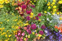 Tag 8 Garten von Coutance